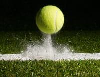 Tennis : ATP Finals - Novak Djokovic / Dominic Thiem