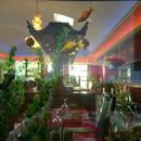 Restaurant : Jardin d'Asie