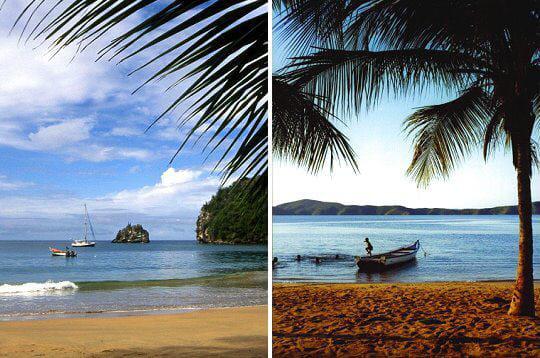 Scènes de plages