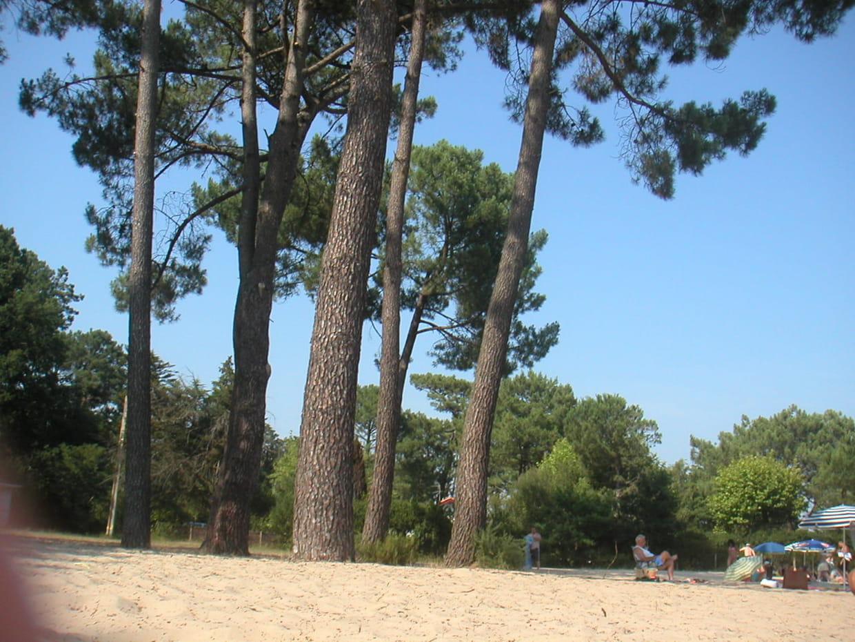 Aquitaine A Voir Meteo Monuments