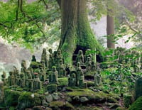 Le Japon vu du ciel : La terre des dieux