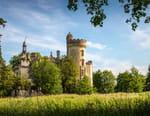 Vestiges : le château de la Mothe-Chandeniers