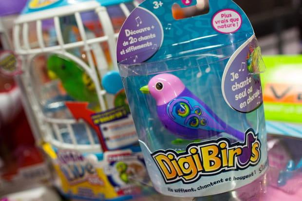 Digibirds: de drôles d'oiseaux