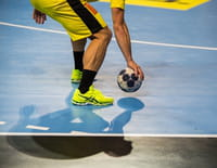 Handball : Championnat du monde masculin - France / Suède