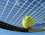 Tennis : Tournoi ATP d'Eastbourne - Finale