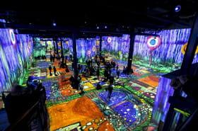 Atelier des Lumières: Klimt en projection jusqu'à ce samedi