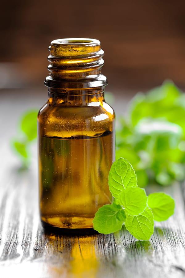 Quelles solutions naturelles pour se d barrasser des punaises - Punaises de lit huiles essentielles ...