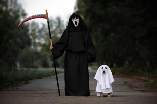 Halloween2019: sorties, costumes, recette et origine de cette fête