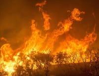 Incendies géants, enquête sur un nouveau fléau : Incendies géants, survivre dans l'ère du feu