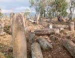 Ethiopie, le mystère des mégalithes