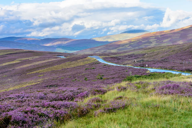 Le parc national des Cairngorms, en Ecosse