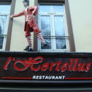 L'Hortellus  - LAFLEUR à l'HORTELLUS -   © L'HORTELLUS