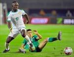 Football : Coupe d'Afrique des Nations - Sénégal / Algérie