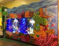 Les rois des aquariums : Un palace pour poissons