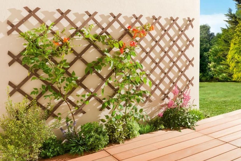 Fabriquer Treillis Bois Pour Plantes Grimpantes un treillis pour un joli mur végétal