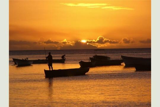 36ème: l'Ile Maurice