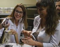 Sur les routes de la science : A la recherche d'un anti-venin universel (Costa Rica)