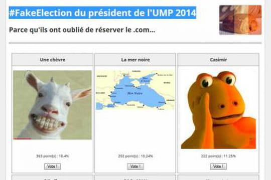 Election UMP: attention, unfaux site Presidentump2014 enligne pour attirer les votants