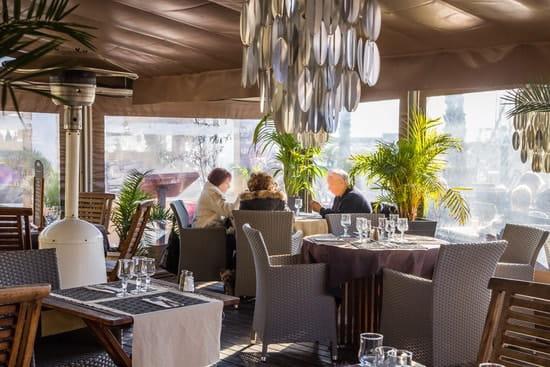 Restaurant le Meryl  - terrasse -   © alain