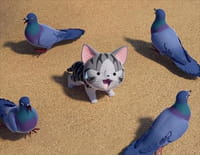 Chi mon chaton : Chi découvre les pigeons