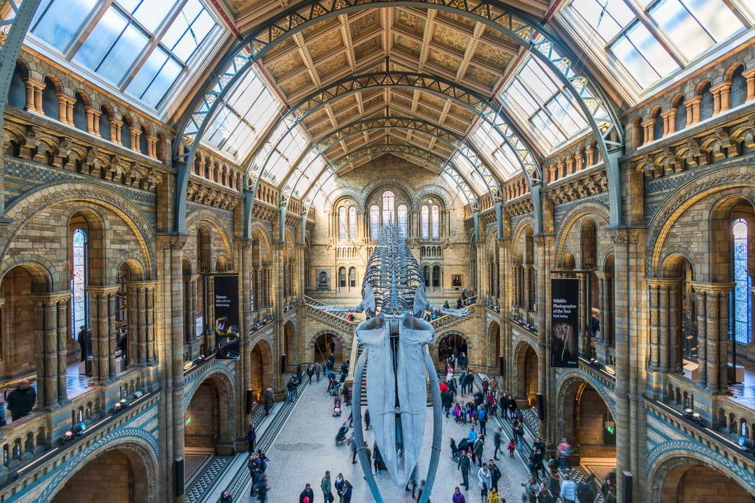 Londres A Voir Visiter Bons Plans Climat Quartiers Monuments