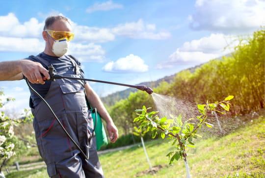 Pulvérisateur de jardinage: comment bien le choisir