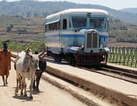 Un billet de train pour... : Madagascar