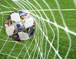 Football - Pays-Bas / France OU Pays de Galles / Danemark
