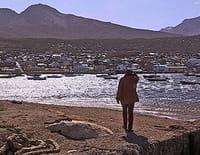 Echappées belles : La route du bout du monde