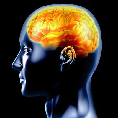 utilisons-nous vraiment que 10% de notre cerveau ?