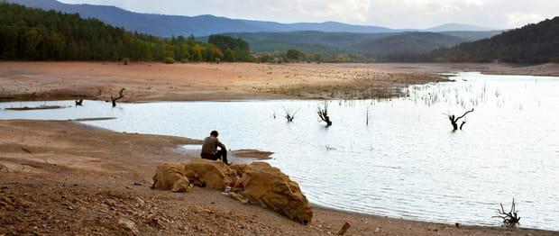 Le Poirier sauvage - Photo 2