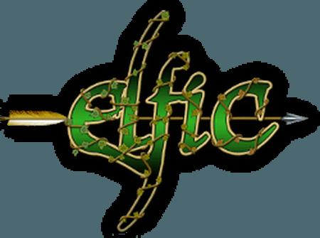 Association Elfic