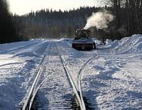 Alaska Express : La bête