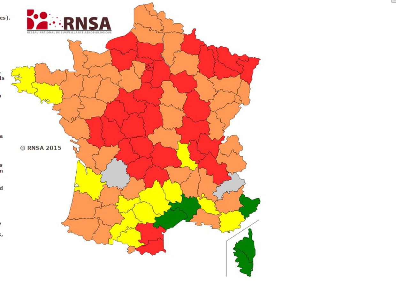 Allergies Pollens La Carte Des 36 Departements En Vigilance Rouge