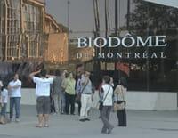 Animaux stars du zoo : Le biodôme de Montréal