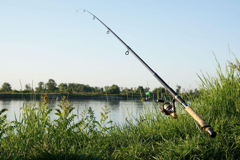 Canne A Peche Fait Maison canne à pêche : comment bien choisir, les bons modèles