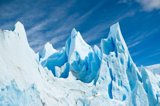 Les oiseaux du Perito Moreno