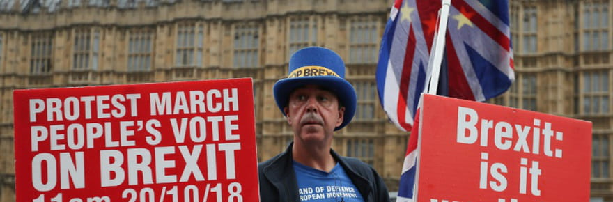 """Grande-Bretagne: le combat acharné de """"Mr Stop Brexit"""""""