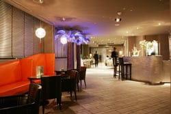 Les Palmiers  - Lounge Bar -   © Hotel et Spa Vatel