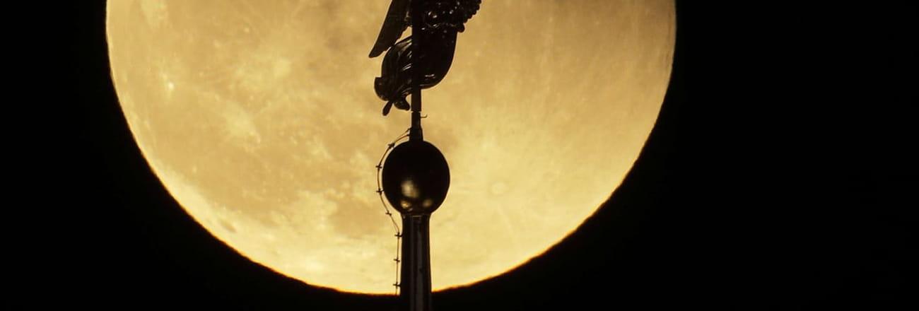 Super Lune: les meilleures photos de la lune bleue de sang
