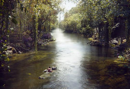 Le Livre de la Jungle s'offre un premier trailer sombre et endiablé
