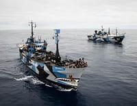 Justiciers des mers : Jeux de hasard