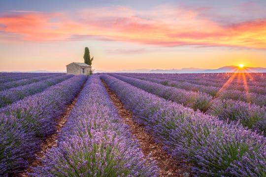 Provence: que faire dans la région? Meilleures destinations