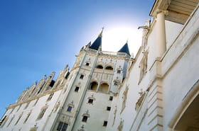 Vos photos du château des Ducs