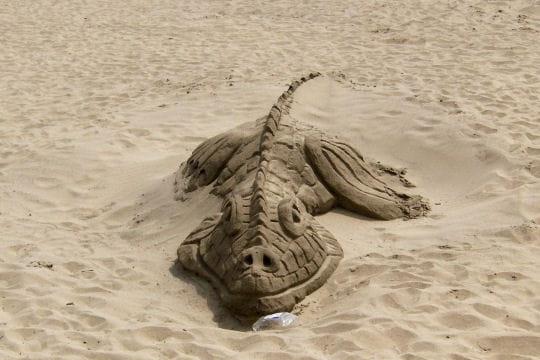 Le sourire du crocodile