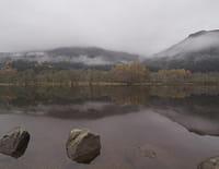 Les quatre saisons du Loch Lomond : Eté
