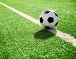 Football : Premier League - Tottenham / Cr. Palace