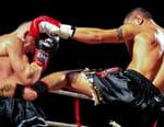 Boxe : Championnat de l'Union Européenne des Poids Lourds - Tony Yoka / Joël Tambwe Djeko