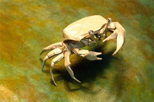 Crabe aux pinces d'or