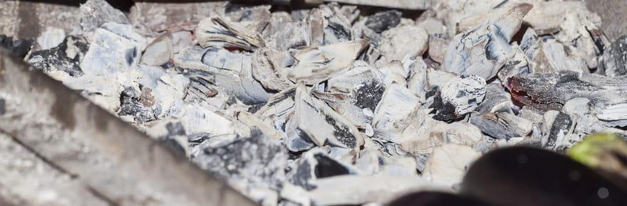 25astuces pour entretenir la maison et le jardin avec des cendres de bois